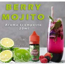 BERRY MOJITO AROMA SCOMPOSTO 20ML - KXS